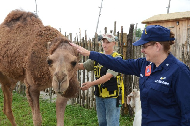 Coast Guard Rear Adm. June E. Ryan, military advisor to the Secretary U.S. Department of Homeland Security, pets a camel during visit to the Muscatatuck Urban Training Center, near Muscatatuck, Ind., Aug. 3, 2013.  Ryan visited Camp Atterbury along with MUTC to better understand the level of extensive training and opportunities available through the use of the facilities during exercises such as U.S. Army North's Vibrant Response 13-2.