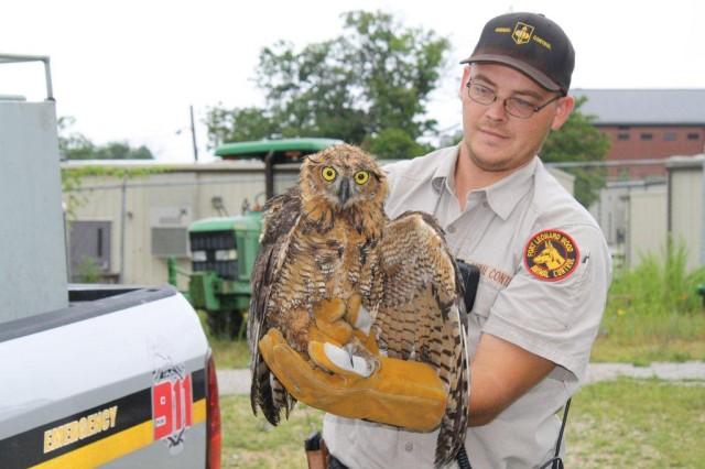 Jonathan Martz, Fort Leonard Wood Animal Control technican, holds an injured owl that is headed to rehabilitation.