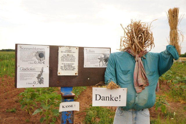 German blumen stands run on an honor system: If you pick flowers, you are expected to make a donation to the farmer who planted them.