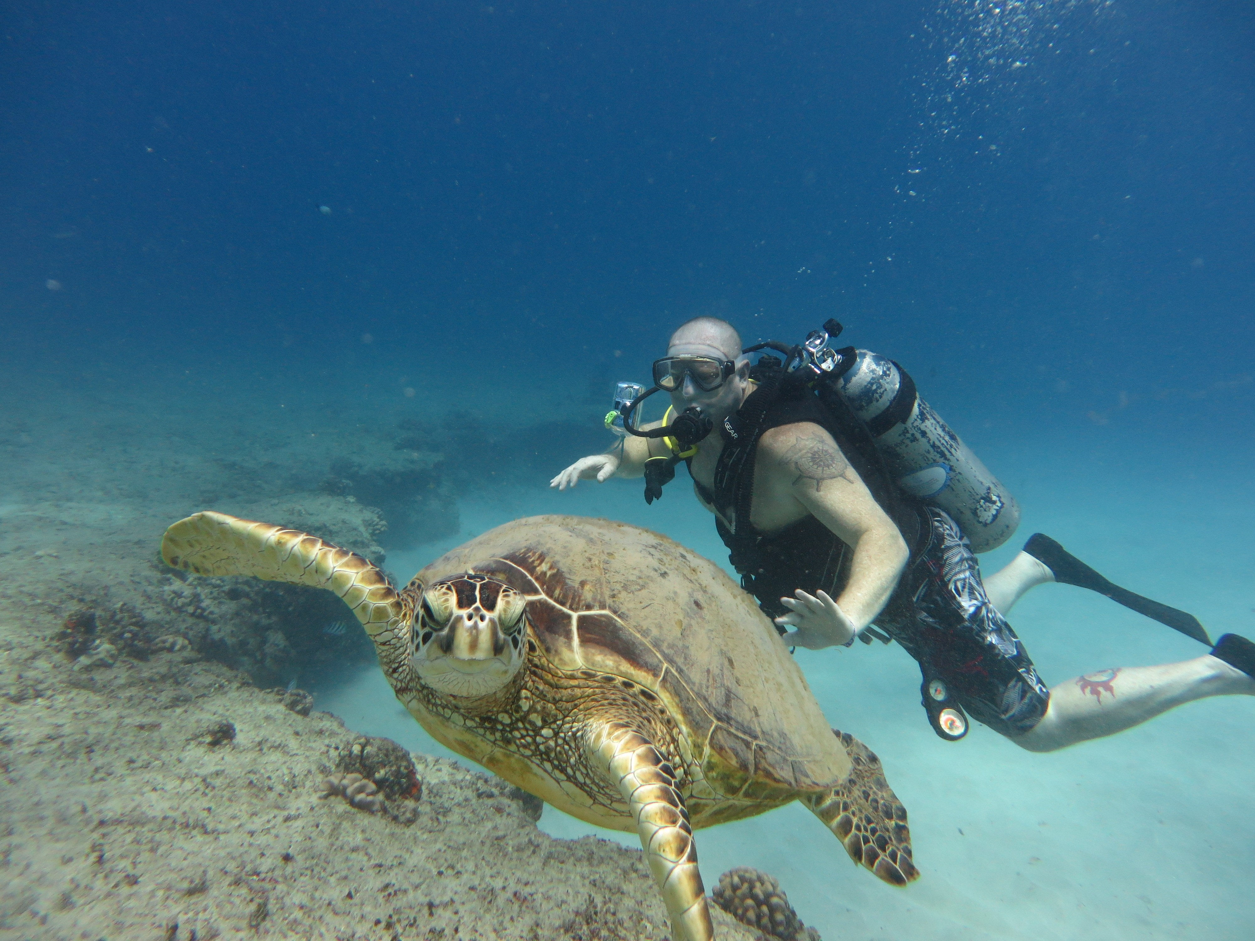 Soldiers dive to new depths with outdoor rec course article the united states army - Dive in scuba ...