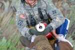 Heroic efforts of Fort Carson MedEvac company save lives in Colorado floods