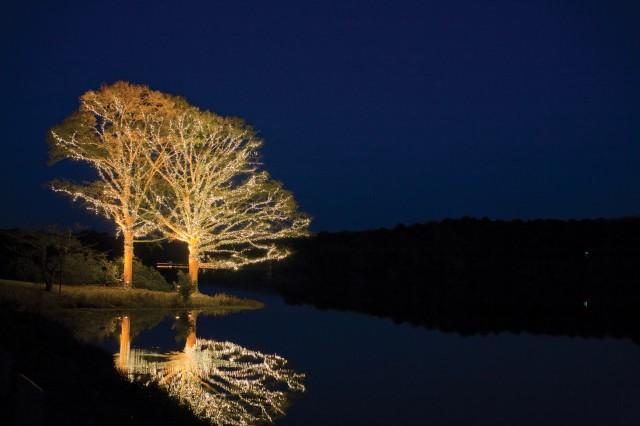 Callaway Gardens Christmas Lights.Callaway Garden S Fantasy In Lights Article The United