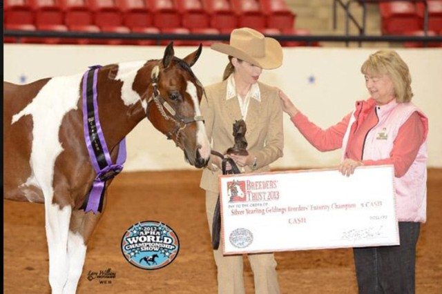 Kristine Alcorn, U.S. Army Space and Missile Defense Command/Army Forces Strategic Command Narrowband Consolidated-SATCOM system expert Global Narrowband Watch Office, G-6 watch officer, and Peter Parker, barn name Spidey, after winning competitions in the American Paint Horse Association and the Colorado High Plains Paint Horse Club.