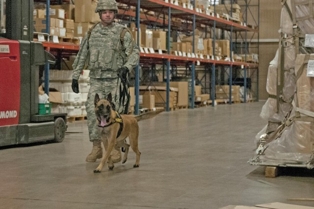 Staff Sgt. Richard Morrison, a military working dog handler with the 226th Military Working Dog, or MWD, Detachment, and his patrol explosive detector dog, Amy, search for explosives during an MWD certification Jan. 7, 2014, at the Central Issue Facility, Fort Hood, Texas. MWD handlers from Fort Bliss and Fort Hood worked tirelessly to complete their annually required Forces Command MWD certification.