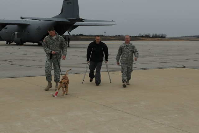Sgt. 1st Class Brandon Collins, 67th Engineer Detachment kennel master, leads Corky, while Sgt. Eric Goldenthal, 67th Eng. Det. is accompanied by Capt. Chad Sparks, Engineer Canine Company commander, Friday at Forney Field. Corky and Goldenthal returned home after both were wounded in Afghanistan.