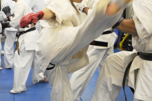 Risa Sudo, a master labor contract employee assigned to the 403rd Army Field Support Battalion-Northeast Asia at Sagami General Depot, practices karate with her students at the Sagamihara Suzuki martial arts dojo.
