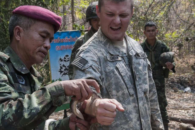 First Lt. Kirk Landon, the battalion targeting officer for 1st Battalion, 21st Infantry Regiment, 2nd Stryker Brigade Combat Team, 25th Infantry Division, is bitten by a non-venomous species of snake to demonstrate the correct removal procedure during Jungle Survival Training at at Ban Dan Lan Hoi, Thailand, Feb. 14, 2014, as part of Exercise Cobra Gold. The Jungle Survival Course is part of the larger Exercise Cobra Gold 2014, a recurring multinational and multi-service exercise, which takes place annually in the Kingdom of Thailand.