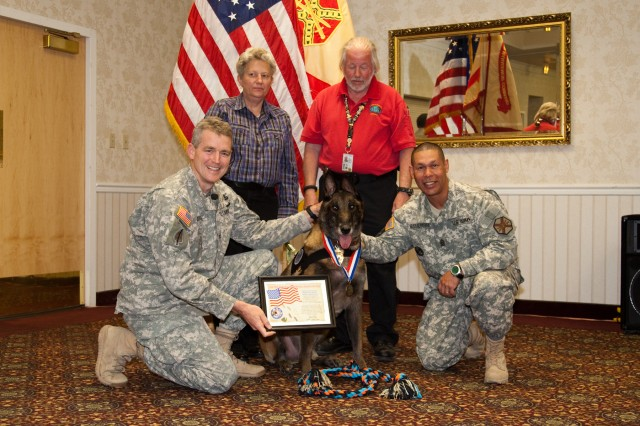 Max, a retired military working dog, was provided a certificate, medal and doggie toys by the War Dogs Association Chapter 1-Western Region, a non-profit that supports handlers and adopters of retired military working dogs. Angela and Thomas Boggs (rear) adopted the Belgian Malinois after he was retired from service that spanned from 2006 to 2013. Max is flanked by Fort Irwin, Calif., United States Army Garrison Commander Col. Jon Braga (left) and Sgt. Maj. Carlos Esmurria, U.S. Army Garrison senior enlisted adviser, during a commander's call at Fort Irwin, in February.