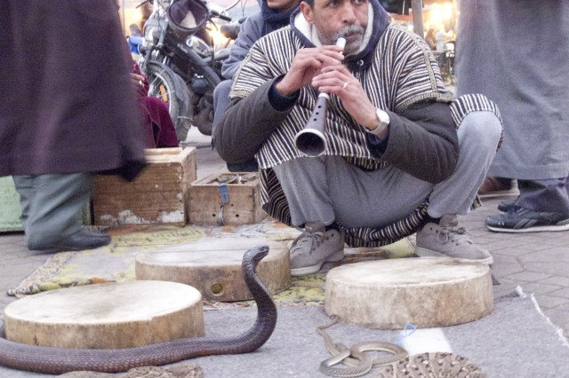 A snake charmer entices his cobra as well as interested tourists in the Jemaa el-Fnaa.