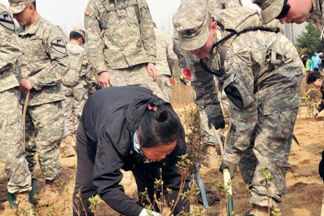 Deployed to South Korea from Fort Hood, Texas on a nine-month rotational deployment, Soldiers of the 1st Battalion, 12th Cavalry Regiment join local residents April 4  to plant 2,100 trees in commemoration of Republic of Korea Arbor Day at Yonghyeon-dong Park .