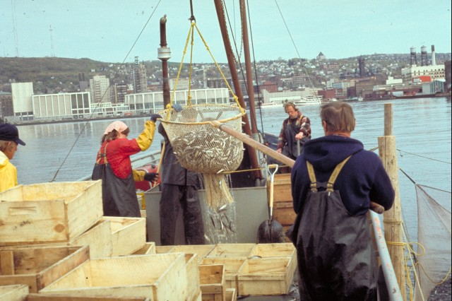 Commercial fishing, Duluth, Mn. (Photo courtesy Minnesota Sea Grant)