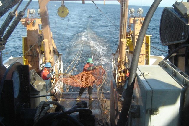 Trawling operations in the Gulf of Maine shelf/slope area on the NOAA Ship DELAWARE II. (Photo courtesy National Oceanic and Atmospheric Administration)