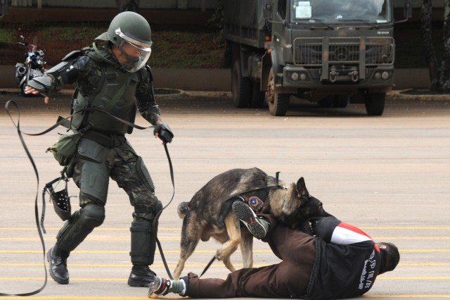 A Brazilian military working dog and his handler assigned to the Batalhao de Policia do Exercito de Brasilia (Brasilia Military Police Battalion) apprehend a role-playing protestor during a riot control demonstration at the battalion's headquarters in Brasilia, Brazil, April 1.