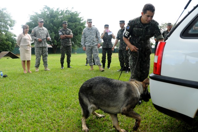 A Brazilian military working dog and his handler assigned to the Batalhao de Policia do Exercito de Brasilia (Brasilia Military Police Battalion) search a vehicle during a narcotics detection demonstration during a military working dog subject matter expert exchange between U.S. Army South and the Brazilian army at the battalion's headquarters in Brasilia, Brazil, April 2.