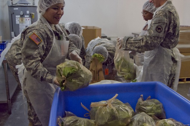 Soldiers of the 81st Regional Support Command at Fort Jackson, S.C., volunteered an afternoon of their time at the Harvest Hope food bank in Columbia on May 22. The Wildcats assisted by sorting donated produce such as lettuce and turnips for distribution to needy families. Pictured in the foreground is Sgt. 1st Class Dayan Infantas.
