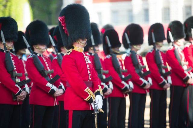 Guard of Honour Inspection