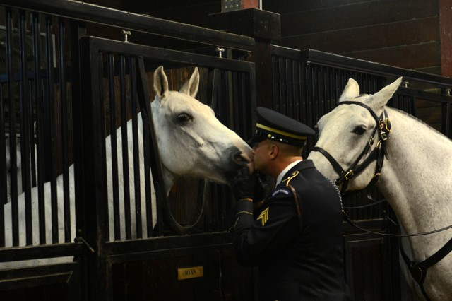 Sgt. Daniel Miller with the Caisson Platoon says hello with a kiss to a caisson horse, Joint Base Myer-Henderson Hall, Arlington, Va., Oct. 2, 2014.