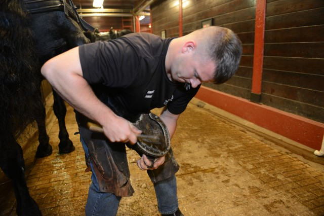 A farrier in the Caisson Platoon ensures that a horse's shoe is on tightly, to avoid any mishaps and protect both the horse and the riders, Joint Base Myer-Henderson Hall, Arlington, Va., Oct. 2, 2014.