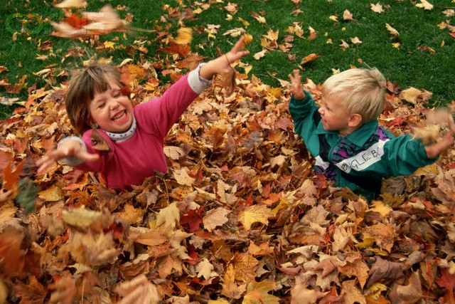 Image result for kids playing outside in autumn