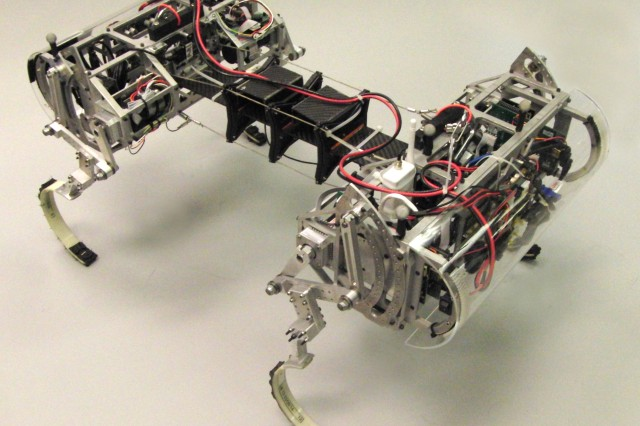 Army researchers explore adding a flexible torso to a legged robot to offer increased speed, maneuverability and running efficiency over extremely rough terrains, compared to wheeled, tracked and stiff-backed legged robots. The Canid robot is the result of ongoing research in the Robotics Collaborative Technology Alliance.