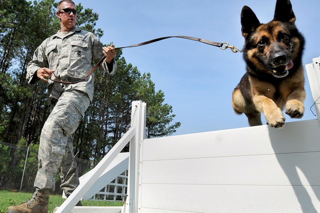 Military working dogs provide valuable assistance to Soldiers as they perform a variety of duties. Personnel at Picatinny Arsenal have been part of an effort to give Army handlers equipment sets that help them keep the dogs healthier, safer and better able to accomplish their mission.
