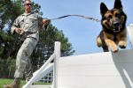 New military working dog equipment sets give service handlers a paw up
