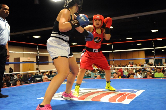 Amateur boxing colorado