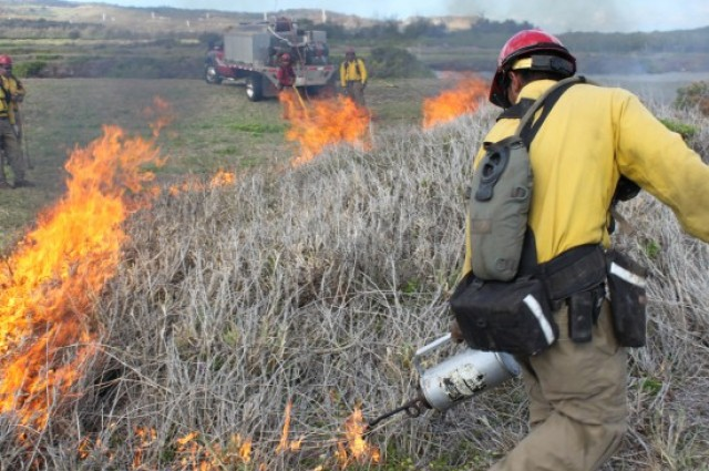 Army takes action against summer wildfires