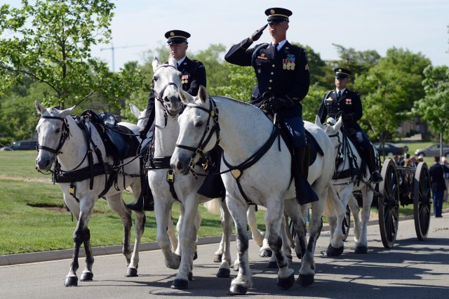Soldiers, with the 3d U.S. Infantry Regiment (The Old Guard), escort the casket of Army Master Sgt. James W. Holt to the burial site in Arlington National Cemetery, Va., May 14, 2015. Holt went missing and was presumed killed in action during the Vietnam War.