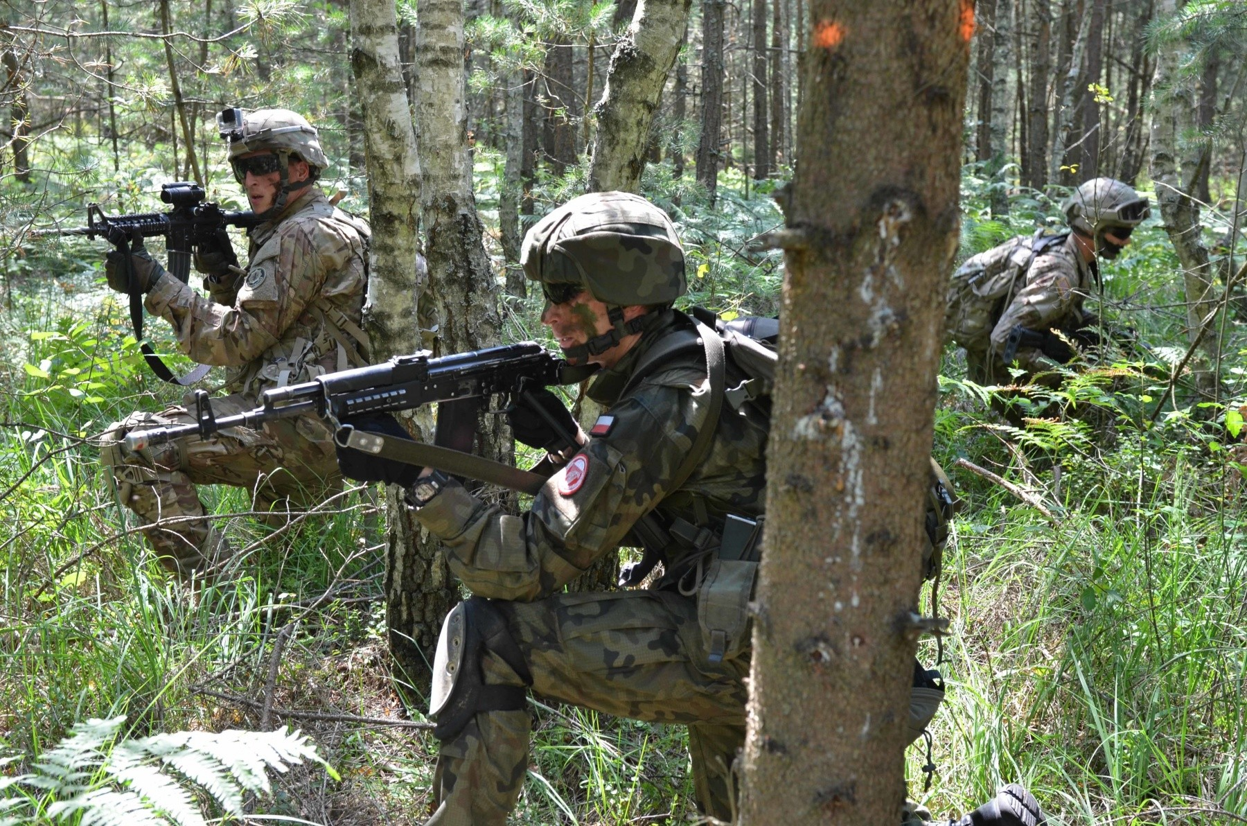 Us Polish Forces Participate In Joint Air Assault