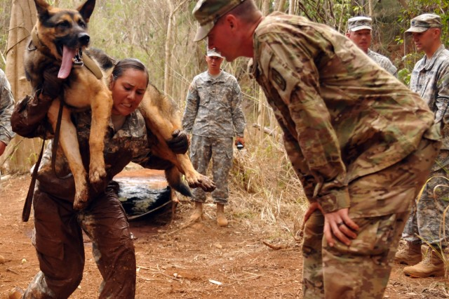 Working Dog Competition Tests Skills Builds Camaraderie