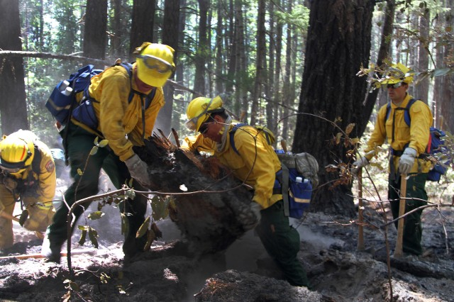 Soldiers from Task Force Alpha, California Army National Guard, remove a burnt tree stump to extinguish a fire, Aug. 9, near the mountains of Wildcat Butte, Humboldt County, Calif., during the Humboldt lightning fire. In less than two weeks, the Humboldt lightning fire scorched 4,700 acres.