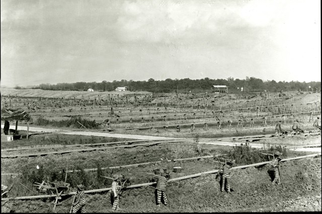 Prisoners from Angola Penitentiary construct a levee near New Orleans in 1890.
