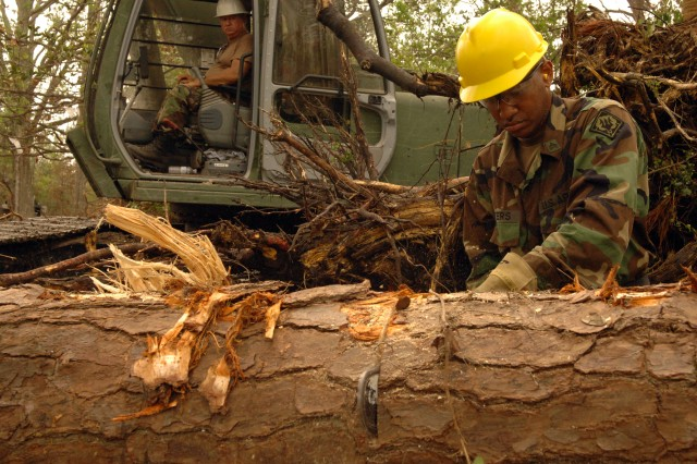 """Track hoe operator Sgt. Dolphus """"Buster"""" Carter, left, waits as Sgt. Jamie Peters chainsaws a toppled pine so he can lift it neatly into the pile of roots, stumps, dead fall, and timber he has been raising. Carter and Peters serve with the Mississippi Army National Guard's B Company, 890th Engineer Battalion, headquartered in Pascagoula."""