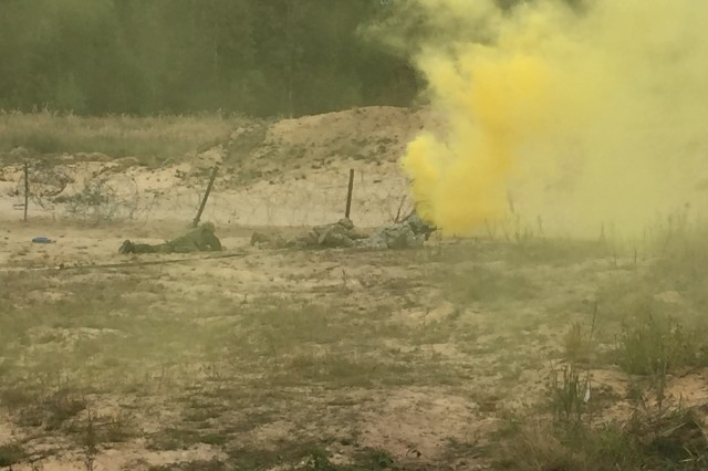 U.S. and Lithuanian combat engineers take part in a combined Best Sapper Competition, hosted by the 173rd Airborne Brigade in Rukla, Lithuania, Sept. 29, 2015.