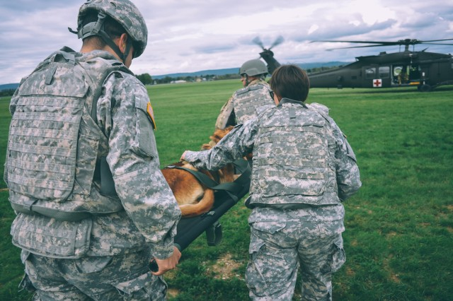 Capt. Melissa Dugan, right, the Wiesbaden Veterinary Clinic Officer in Charge, and Private 1st Class Gilberto Lizarraga, to the rear of stretcher, help Staff Sgt. Erik Rosengren, a military working dog handler, carry his MWD, Hella, to a waiting helicopter during MEDEVAC training Oct. 8.