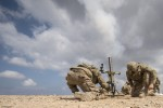Live-fire exercise in Djibouti