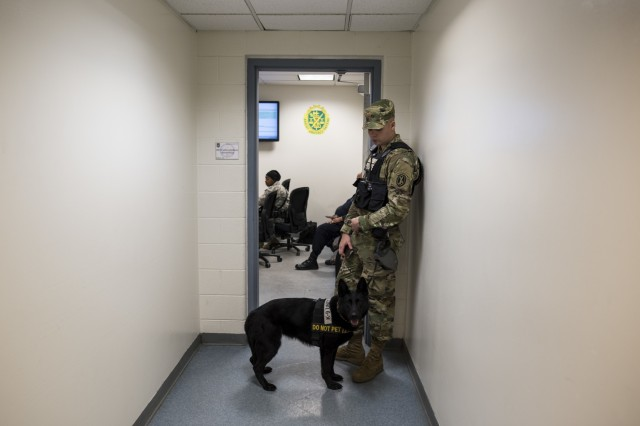 Pfc. Michael Fletcher, military police Soldier with the 289th MP Company, waits outside of a morning meeting with Cessy, a military K9 police dog, at Joint Base Myer-Henderson Hall, Va., Feb. 17. The 289th MP Company, belonging to the 3rd U.S. Infantry Regiment (The Old Guard), is currently running a partnership pilot program with the U.S. Army Reserve's 200th MP Command, which began in early February, placing Army Reserve Soldiers on active duty orders for three weeks while working at Joint Base Myer-Henderson Hall, Fort Lesley J. McNair and the Arlington National Cemetery. Army Reserve Soldiers will also support the Military District of Washington with additional duty days throughout the year. (U.S. Army photo by Master Sgt. Michel Sauret)