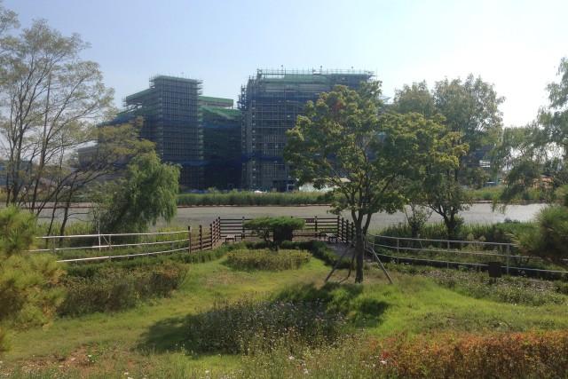 USAG Humphrey wetland enhancemet project