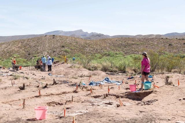 Archaeological Field School