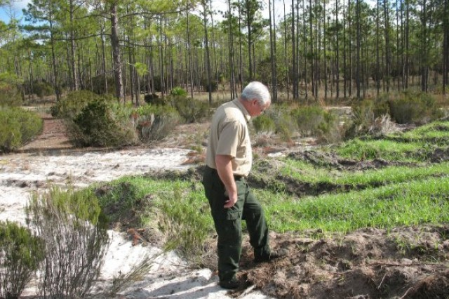 Paul Catlett, the environmental program manager at Camp Blanding, Fla., inspects portions of a project at the installation to restore 500 acres of land unable to support plant growth as a result of mining operations in the 1950s. The restored land not only now supports plant and animal life, but netted the Florida Army National Guard top honors in the annual Secretary of the Army Environmental Awards program. Paul Catlett, the environmental program manager at Camp Blanding, Fla., inspects portions of a project at the installation to restore 500 acres of land unable to support plant growth as a result of mining operations in the 1950s. The restored land not only now supports plant and animal life, but netted the Florida Army National Guard top honors in the annual Secretary of the Army Environmental Awards program.
