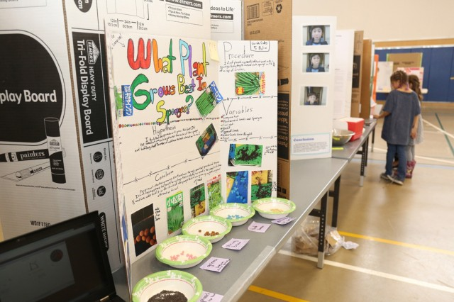 "A display of Sarah Sides, an Arnn 5th-grade student and science fair participant, experimental process of ""what plants grows best in sponges."" (U.S. Army photo by Noriko Kudo)"