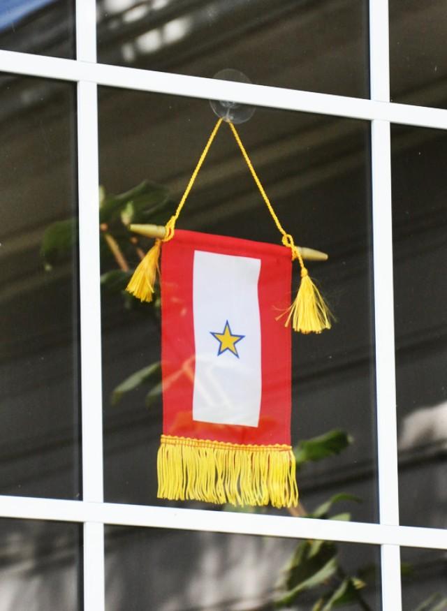 GS Flag in Window
