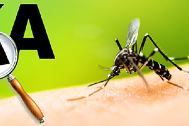 Key information on the Zika virus