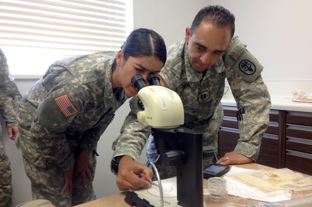 Capt. Mauricio Solis, visiting entomologist from Public Health Command-Atlantic, teaches Sgt. Adelka Caraballo Ponce, preventive medicine specialist, how to identify mosquito samples by species using a microscope.