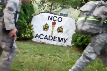 Online town hall to focus on NCO development