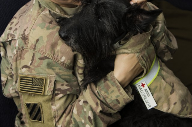Sgt. 1st Class Melissa Kass, a chemical, biological, radiological, and nuclear specialist with the 126th Military Police Company, holds MacGregor MacGregor, a Scottish terrier Human-Animal Bond dog, for the first time on July 1.