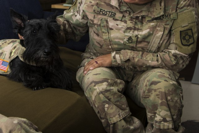 Staff Sgt. Robyn Foster, a human resource specialist with the 126th Military Police Company pets MacGregor MacGregor, a Scottish terrier human-animal bond dog, for the first time on July 1.