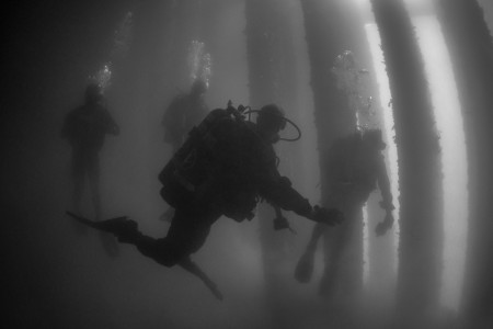 U.S. Army, Royal Australian Navy, U.S. Coast Guard and U.S. Navy military divers swim along concrete piles during a pier maintenance training mission during Rim of the Pacific Exercise, July 13, 2016. The world's largest international maritime exercise, RIMPAC provides a unique training opportunity that helps participants foster and sustain the cooperative relationships that are critical to ensuring the safety of sea lanes and security on the world's oceans.