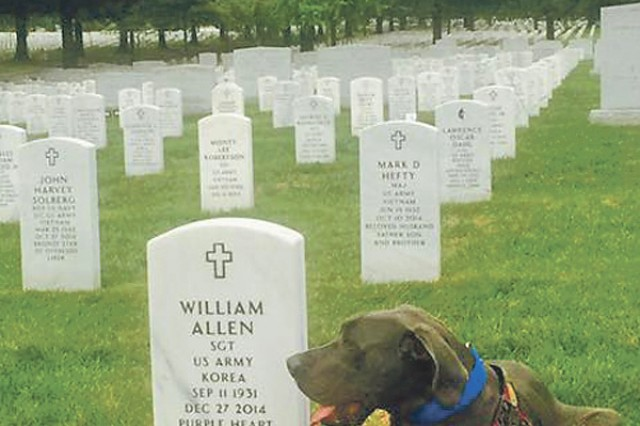 Bandit provided comfort to Families visiting Arlington National Cemetery Oct. 2.